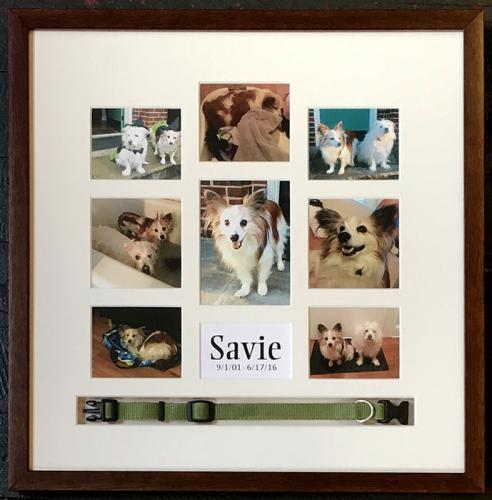 savie-memorial
